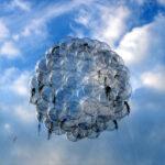 Tomás Saraceno, Se 60 Flying Garden, 2006, 60 palloncini in pvc, elastici, pianta di tillandsia, elio, dimensioni variabili, Collezione Agiverona