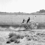 Cavaliere della Mancia, 1956 © Piergiorgio Branzi